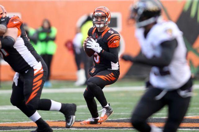 A.J. McCarron fue seleccionado el año pasado (Alabama) y ahora ha tenido que asumir de emergencia la titularidad de los Bengals.